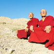 Stock Photo: Two Indian tibetan monk lama