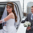 Stock Photo: Happy newly wed couple getting in the car