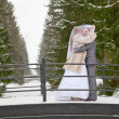 Young wedding Caucasian Russian couple standing on bridge in snowy park. Winter season in Russia — Stock Photo