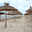 Mediterranean stormy sea coast and empty sandy beach with parasols — Stock Photo
