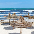 Mediterranean stormy sea coast and empty sandy beach with parasols Mediterranean stormy sea coast and empty sandy beach with parasols — Stock Photo