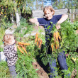 Mature woman in garden with small kid picking the carrot — Foto Stock