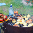Roasted meat an potatoes on the brazier — Stock Photo #12200106