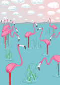 Pink flamingos on the bay. Vector illustration — Stock Vector