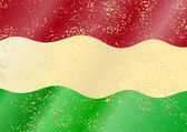 Hungarian grunge flag — Stock Vector