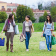 Young Women at Park after Shopping — Stock Photo #11043194