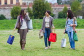 Young Women at Park after Shopping — Stock fotografie