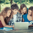 Group of Teenage Students at Park with Computer and Books — Stock Photo #11545750