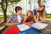 群十几岁的学生在公园 — 图库照片