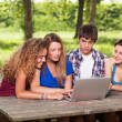 Group of Teenage Students at Park with Computer and Books — Stock Photo #12012008