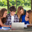Group of Teenage Students at Park with Computer and Books — Stock Photo #12252892