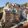 Riomaggiore Village in Cinque Terre, Italy — Photo