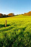 Green Pastures around Farm House in Switzerland — Stock Photo