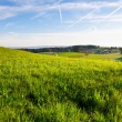 Green Pastures — Stock Photo #11029176