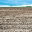 Stock Photo: Furrow
