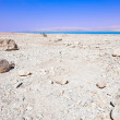 Dead Sea — Stock Photo #11465366