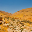 Israel Desert - Stock Photo