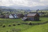 карпатское село — Стоковое фото