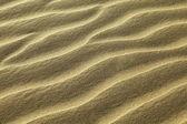 Rippled sand — Stock Photo