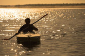 Rowing at sunset — Foto Stock