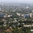 Almaty city — Stock Photo #12171032