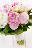 Rich bunch of peonies — Stock Photo