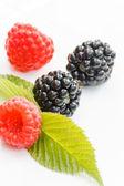 Berry fruits — Stock Photo