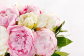 Rich bunch of peonies — Stockfoto