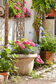 Nice yard with flowers — Stock Photo