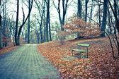 осень парк — Стоковое фото