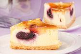 Torta di formaggio saporito — Foto Stock