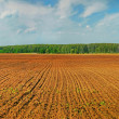 Stock Photo: Ploughland