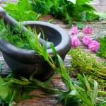 Fresh Herbs — Stock Photo #10929981
