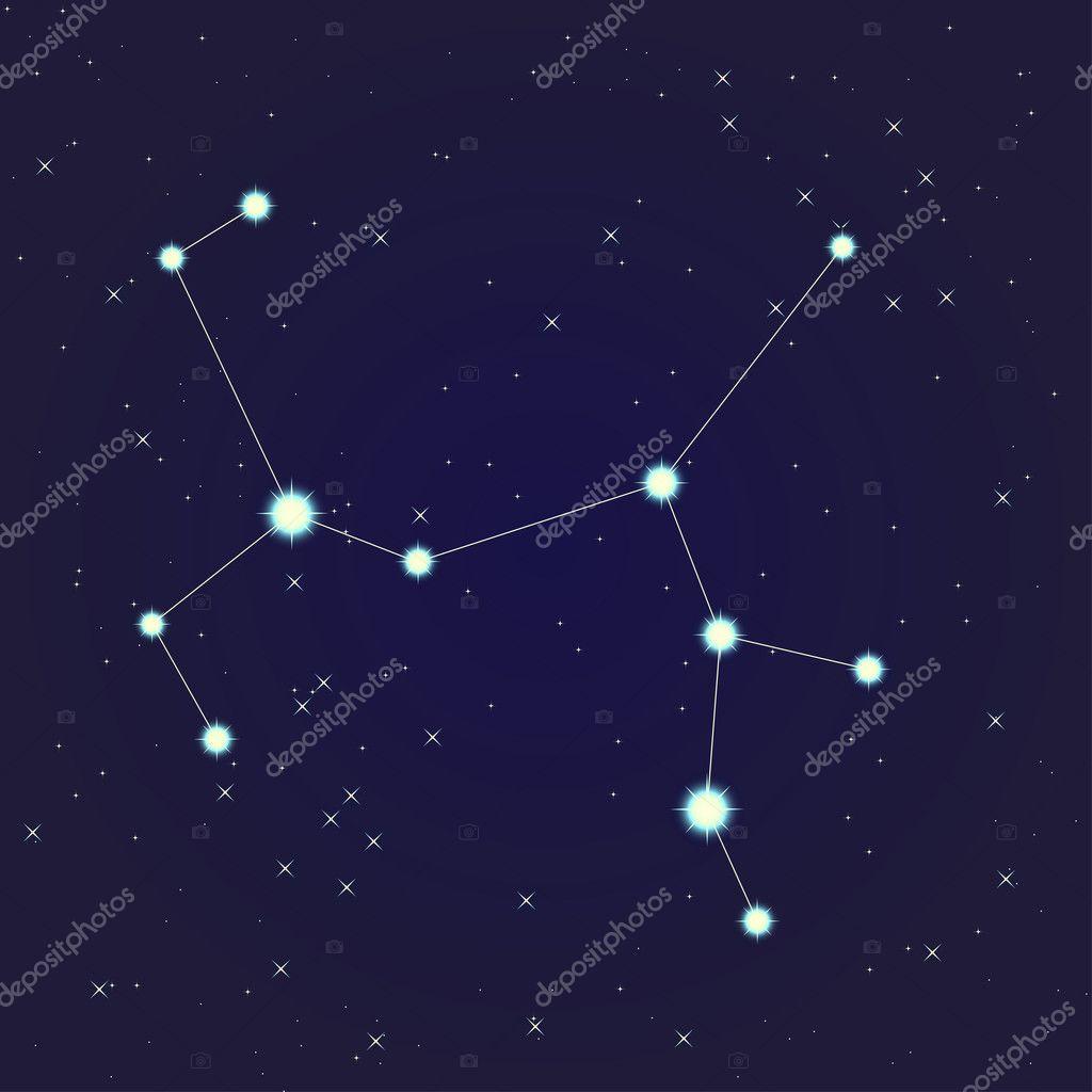 Sternbild Schütze — Stockvektor © Objektivchik #10929279