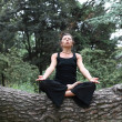 Stock Photo: Meditation In Forest