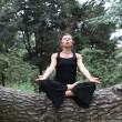 Stockfoto: Meditation In Forest