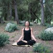 Stock Photo: YogIn Forest
