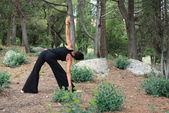 Yoga im wald — Stockfoto