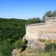 ancienne forteresse — Photo