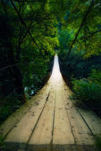 Pont suspendu — Photo
