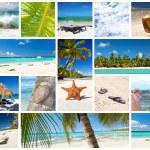 Caribbean collage — Stock Photo