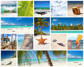 Colagem tropical — Foto Stock