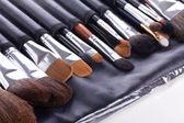 Set of professional make-up brushes — Stock Photo