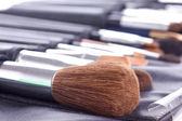 Professional make-up brushes — Stock Photo
