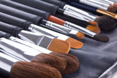 Set of professional make-up brushes — Stock Photo