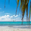 A beautiful image of caribbean sea — Stock Photo #11975350