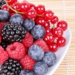 Assortment of berries — Stock Photo
