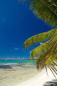 A beautiful image of tropical beach — Stock Photo