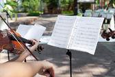 Playing on violin on wedding ceremony — Stock Photo