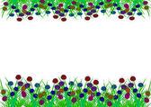 Flores da primavera — Fotografia Stock